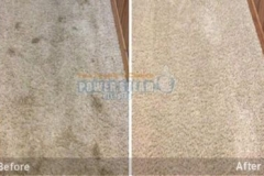 CarpetcleaningBrisbane