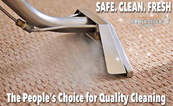 PROFESSIONAL CARPET STEAM CLEANING