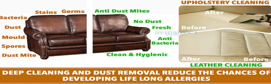 Leather Lounge Cleaning Brisbane- PSC