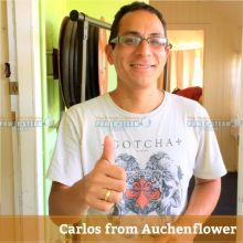 Thank You Carlos From Auchenflower For Carpet Cleaning Review